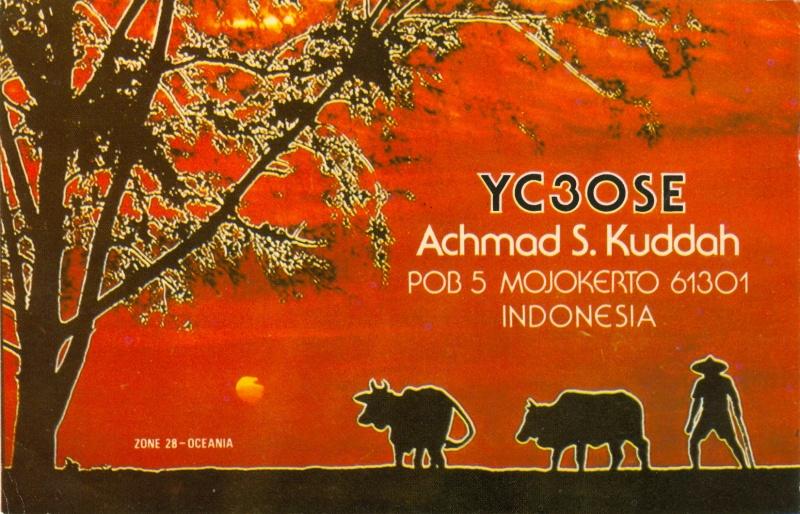 YC3OSE_800